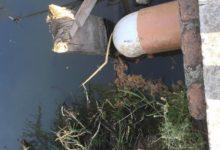 Un lago más está siendo contaminado, el lago de Camécuaro 3 - Pátzcuaro Noticias
