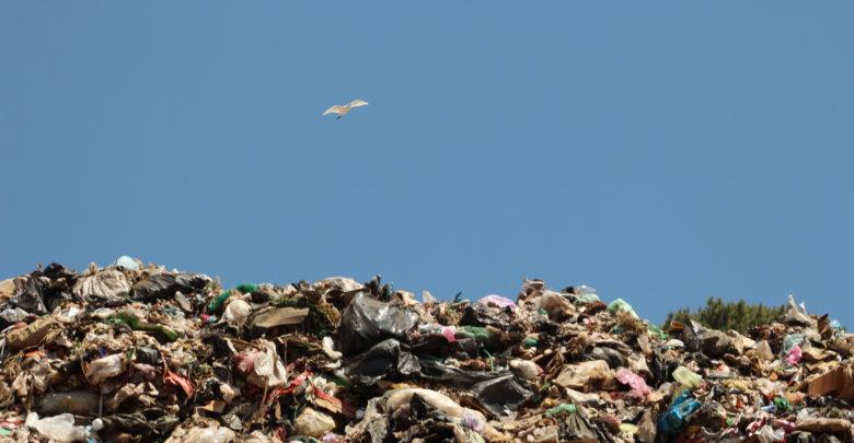 Con la prohibición de plásticos de un sólo uso, Pátzcuaro es modelo a seguir: Víctor Báez - Pátzcuaro Noticias