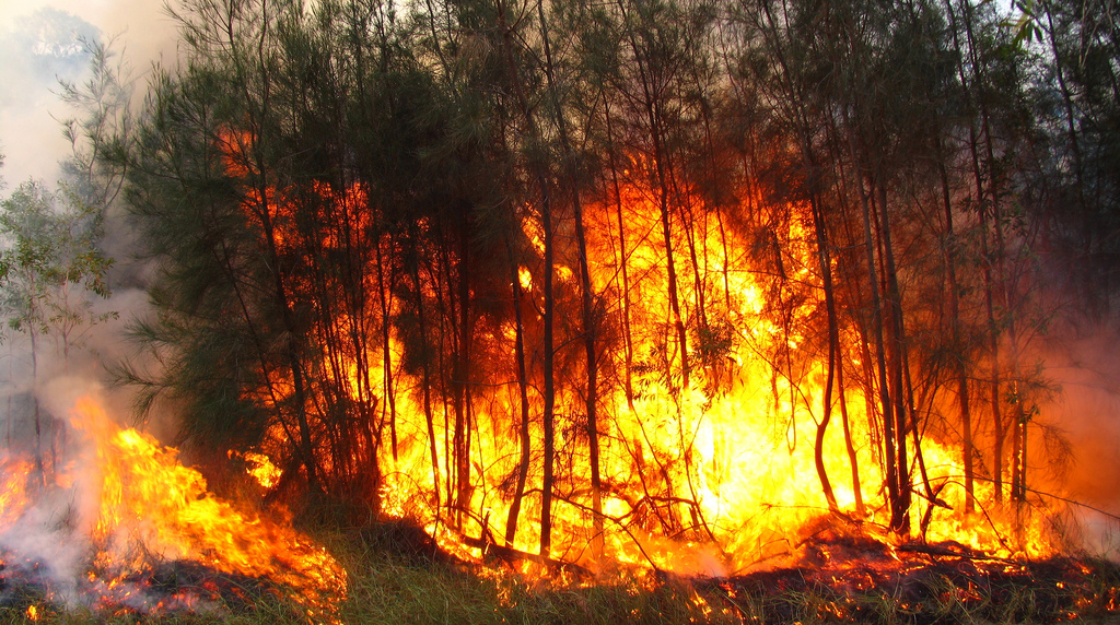 Inician en Pátzcuaro campaña contra incendios forestales