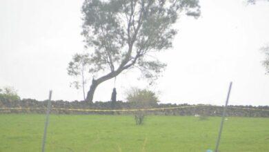 Hallan cadáver de un hombre colgado en un árbol en Morelia