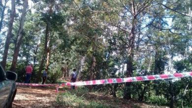 Jovencita de Pátzcuaro se quita la vida colgándose de un árbol