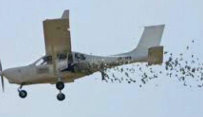 Desde avioneta, arrojan volantes con amenazas entre grupos criminales en Tepalcatepec, Michoacán