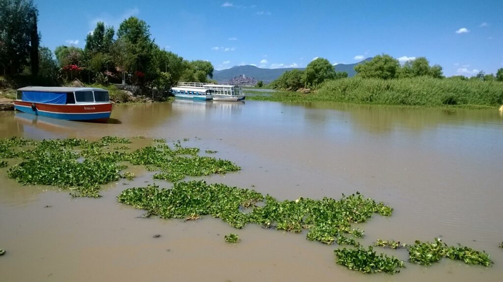 Al 49 % plantas tratadoras de la cuenca del Lago de Pátzcuaro