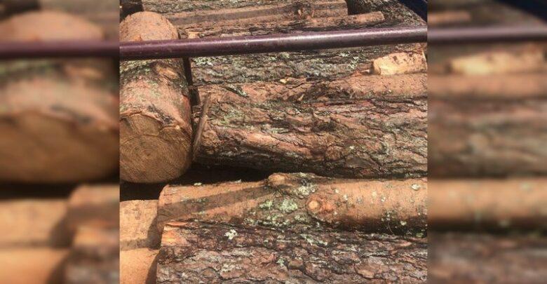 Detienen a tres con vehículos cargados de madera ilegal en Pátzcuaro