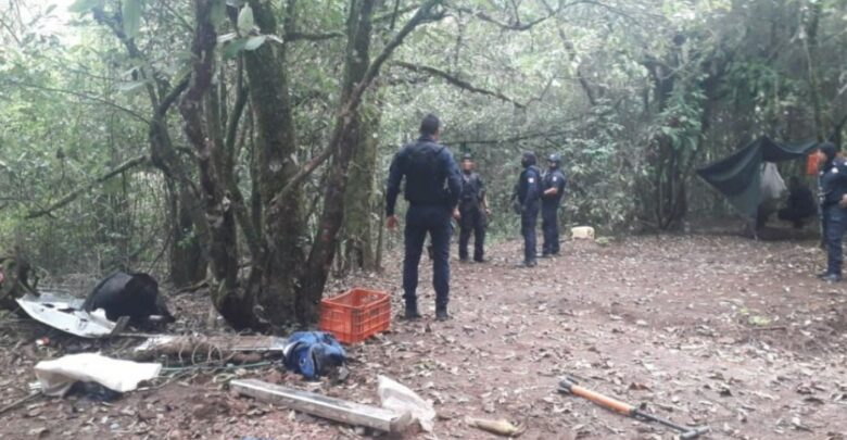 Descubren campamento de crimen organizado