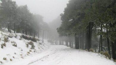 zitácuaro nieve Michoacán