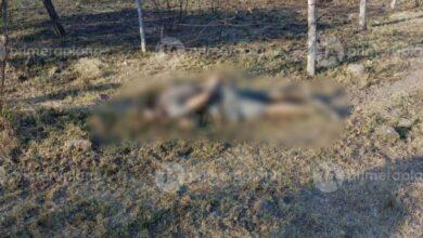 Dejan 2 cadáveres detrás de un hotel en Michoacán