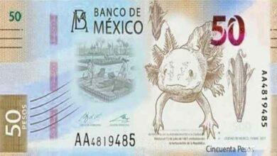 Nuevo billete de 50 pesos; tendrá un ajolote