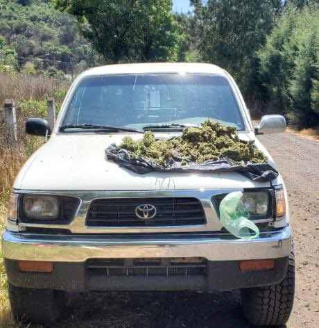 Detienen en Pátzcuaro a una persona con marihuana