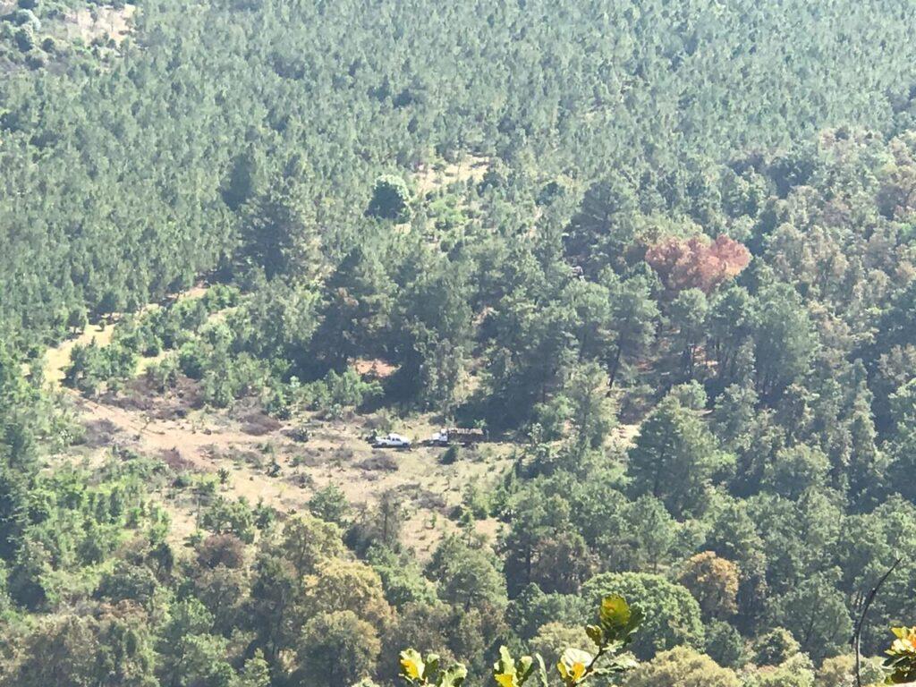 Talan bosque del Estribo Grande de Pátzcuaro