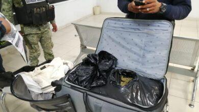 Dejan maleta con 8.3 kilos de marihuana en Apatzingán
