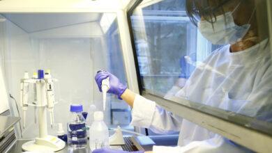 """Farmacéutica de Estados Unidos dice tener un anticuerpo que impide al coronavirus afectar las células """"en un 100 %"""""""