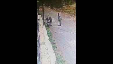 VIDEO: Dos jóvenes se roban una motocicleta en Pátzcuaro y son grabados