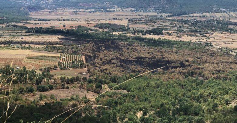 Incendio en el Estribo Grande de Pátzcuaro no afectó huertas aledañas