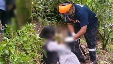 Encuentran a niño de 11 años colgado de un árbol en Michoacán