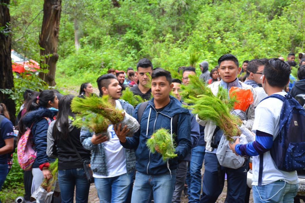 Se sembrarán 60 mil árboles en reforestación de Pátzcuaro: Víctor Báez Ceja