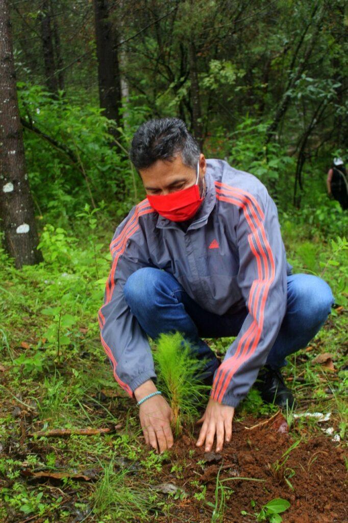 Víctor Báez da inicio a las jornadas de reforestación 2020 en Pátzcuaro