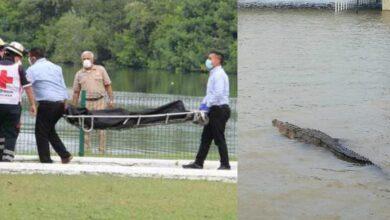 VIDEO: Cocodrilo mata a sujeto en la Laguna del Carpintero de Tampico, Tamaulipas