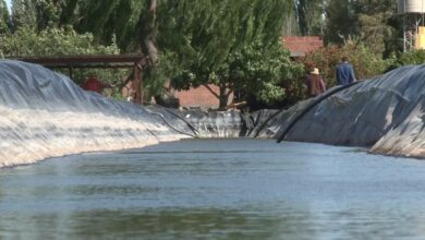 Tzintzuntzan: Niño muere ahogado en olla agrícola