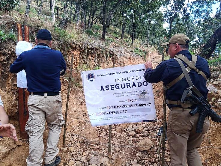 Aseguran 3 predios en Cuanajo por presunta relación en delitos contra el ambiente