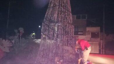 Queman árbol de Navidad de Tacámbaro [FOTOS]