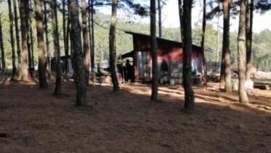 FOTOS: Localizan campamento relacionado en hechos ilícitos en el lago de Zirahuén