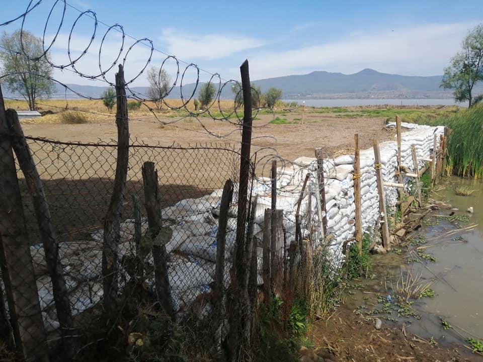 En Tzintzuntzan, secan el lago de Pátzcuaro para ampliar terrenos particulares 3
