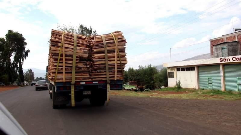 Aseguran en Pátzcuaro predio relacionado con delitos contra el medio ambiente
