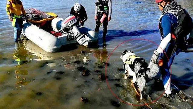 Athos ayudó en el rescate de Miguel y Jinebra en el lago de Pátzcuaro