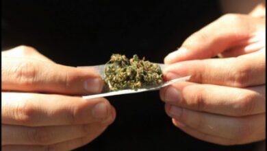 En Pátzcuaro, un hombre es detenido en la colonia Los Reyes por posesión de marihuana